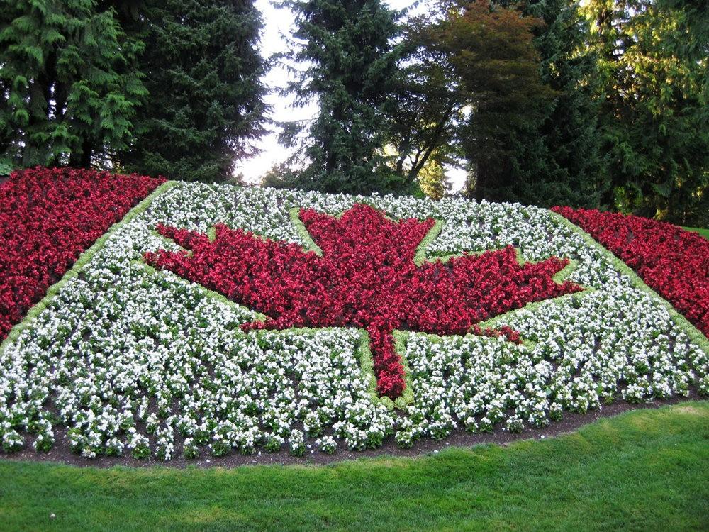 访问温哥华----2_图1-8