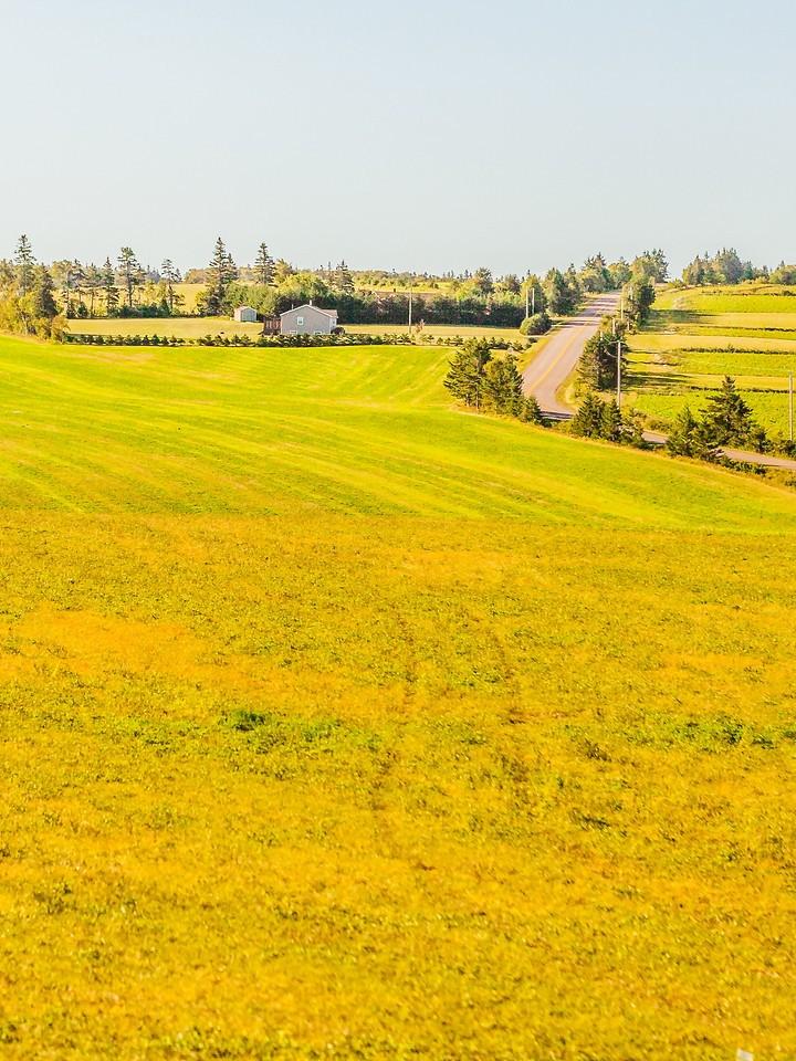 加拿大路途,村里的发现_图1-6