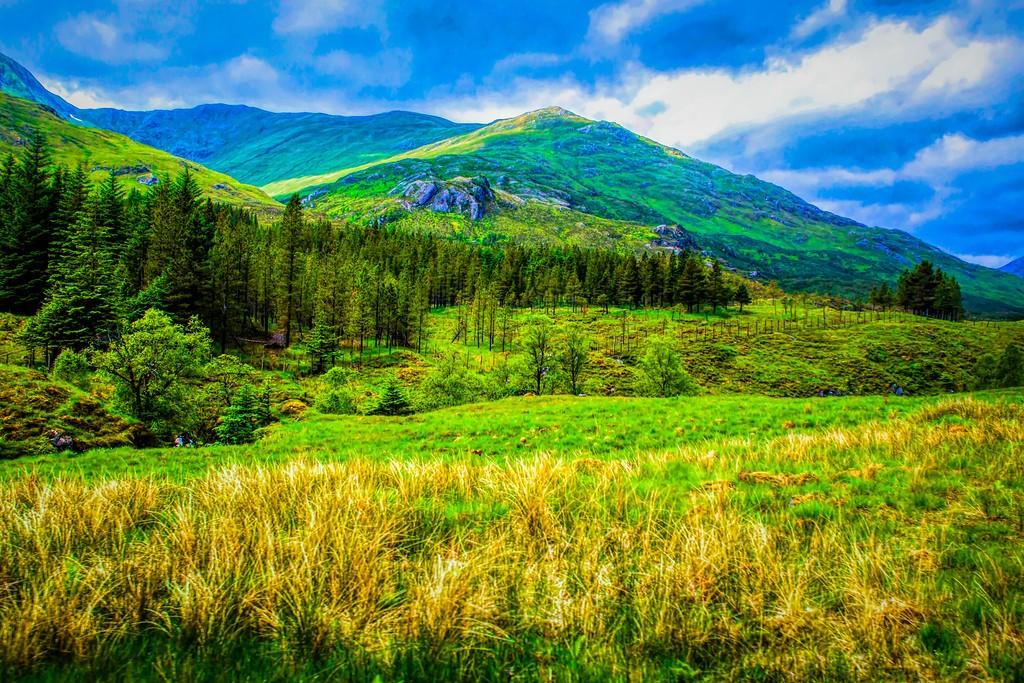 苏格兰美景,景色如画_图1-22