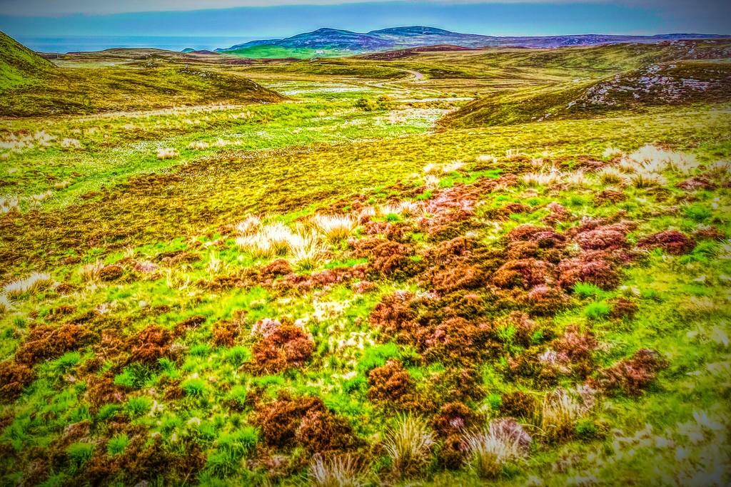 苏格兰美景,景色如画_图1-32