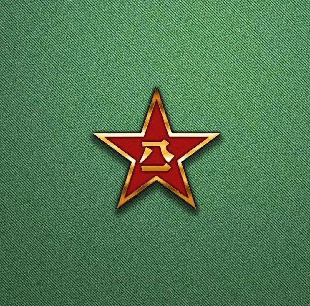 中国人民解放军回乡转业建设军人证明书-李太和_图1-9