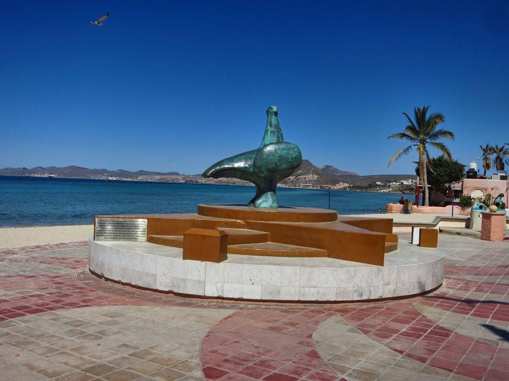 拉巴斯-离开墨西哥大陆的半岛城市_图1-2