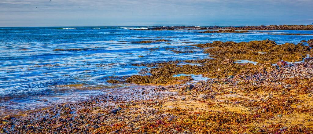 冰岛风采,海岸线上的雪山_图1-8