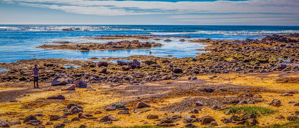 冰岛风采,海岸线上的雪山_图1-4