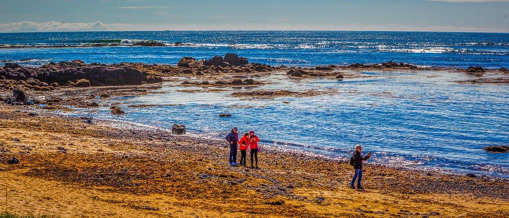 冰岛风采,海岸线上的雪山_图1-5