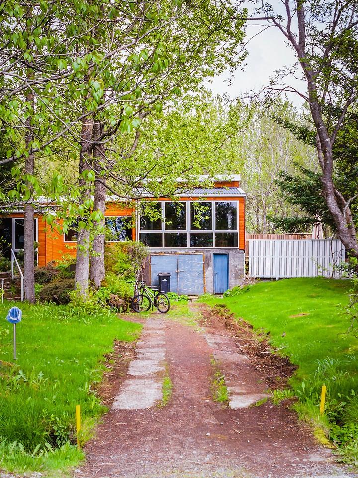冰岛弗里德海默番茄农场(Frioheimar tomato farm),看马术尝番茄_图1-17