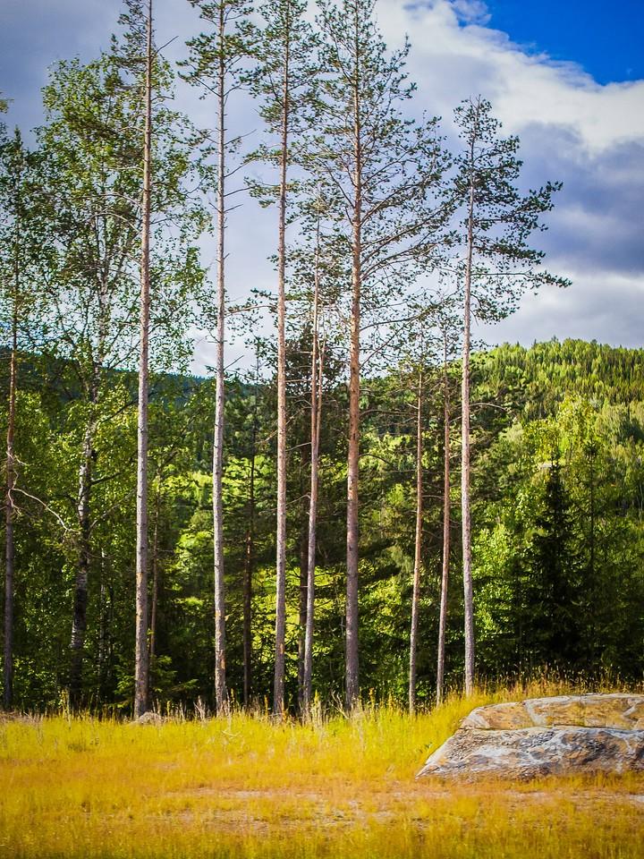 北欧风光,风光无限_图1-6
