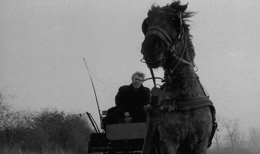 """电影之""""马""""驰骋哲学原野——评《青年马克思》与《都灵之马》 ... ..._图1-2"""