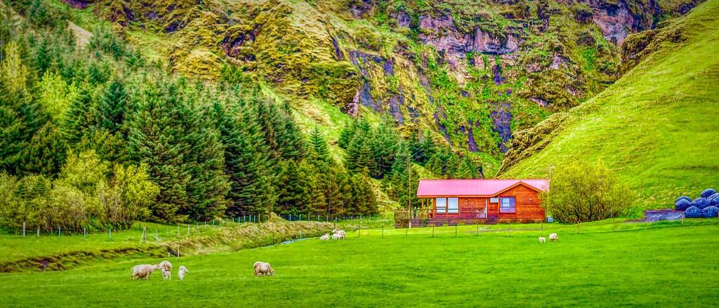 冰岛风采,温馨体验_图1-40