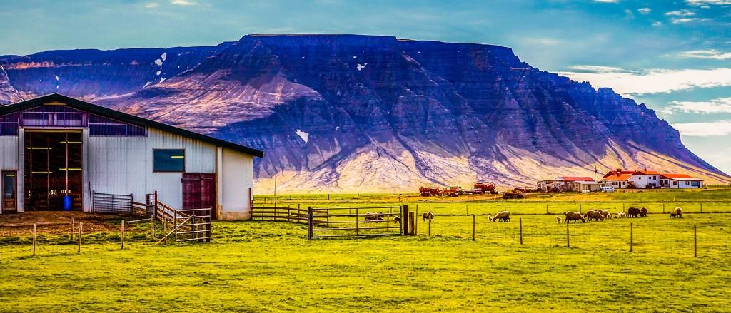 冰岛风采,温馨体验_图1-28
