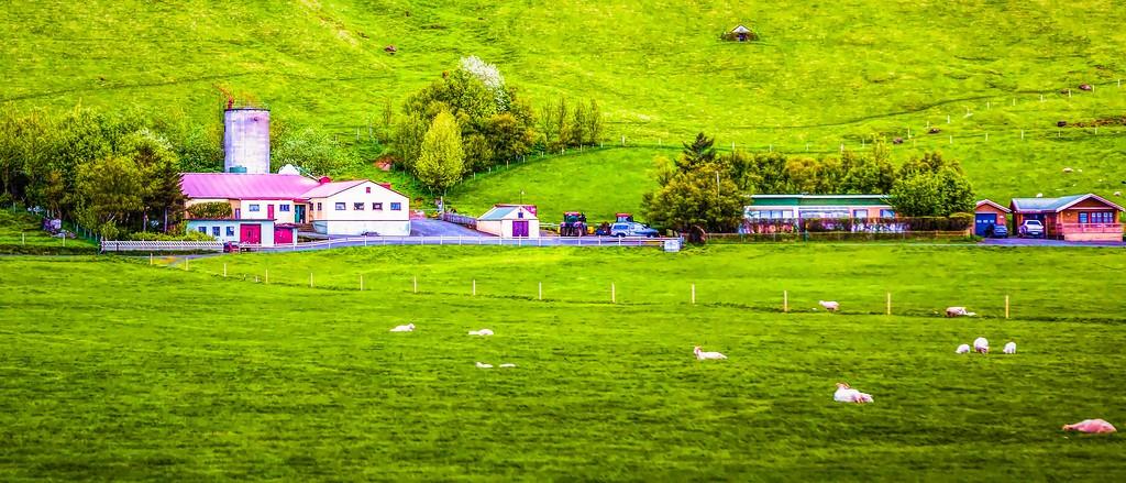 冰岛风采,温馨体验_图1-14