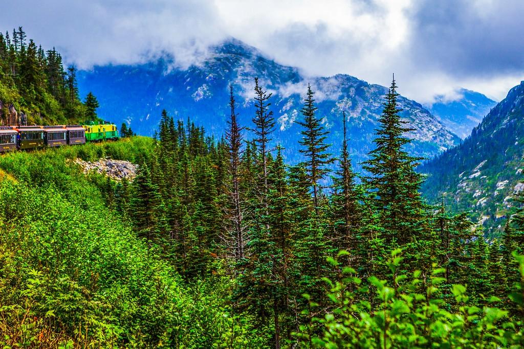 阿拉斯加归来,进山体验_图1-16
