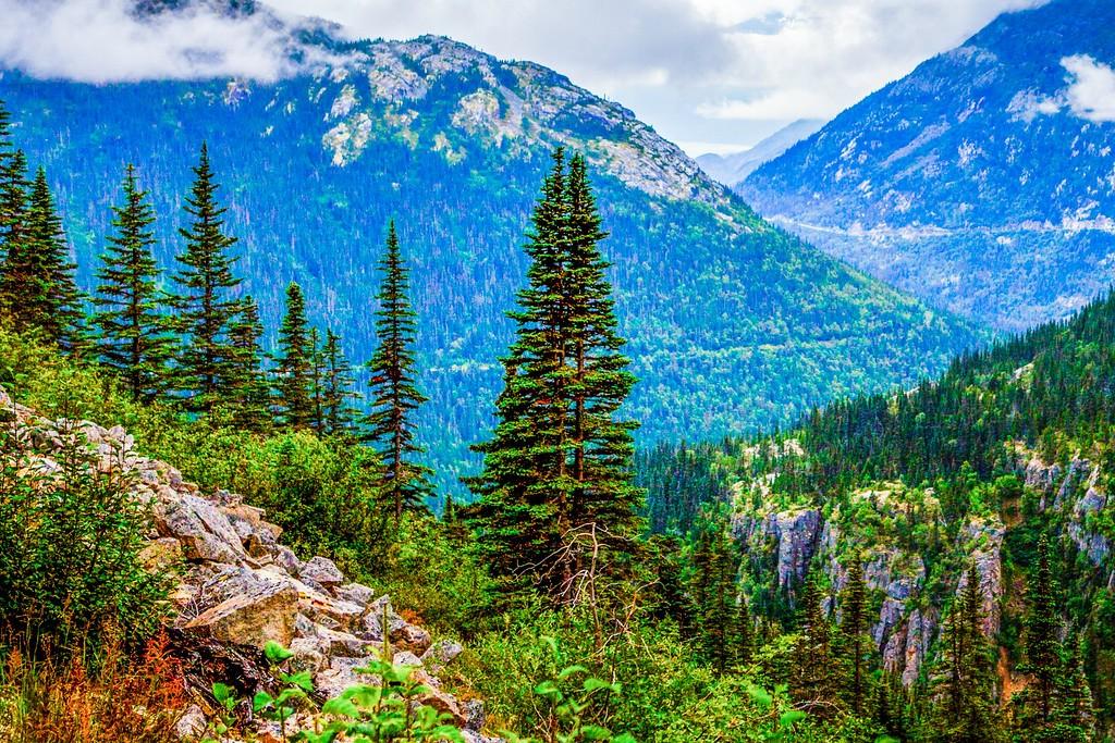 阿拉斯加归来,进山体验_图1-26