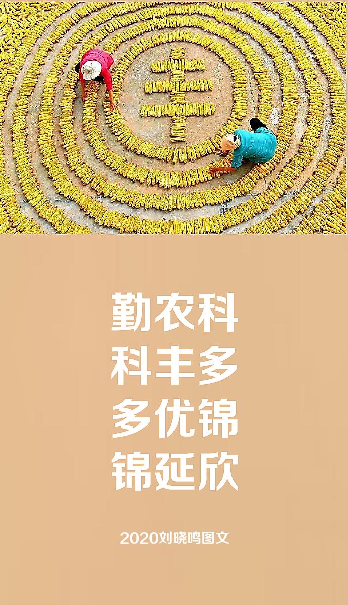 【晓鸣图文】丰景阔天_图1-2