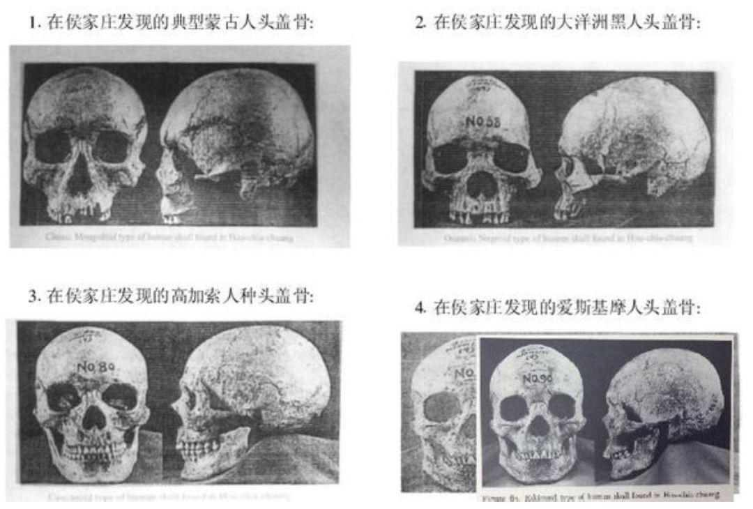 我们都是中国人_图1-2