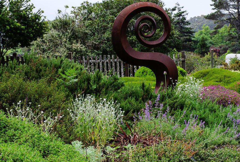 门多西诺海岸植物园重新开放_图1-21