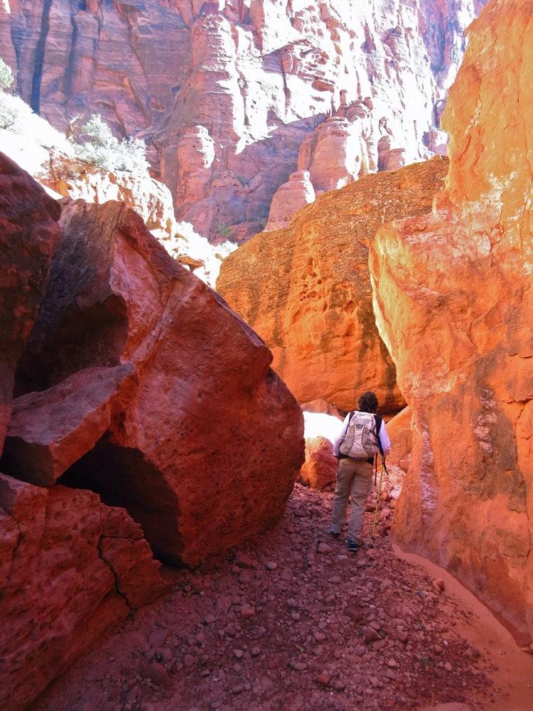 接近红墙岩_图1-8