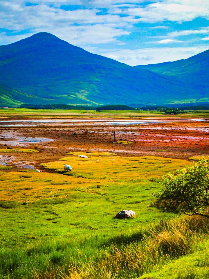苏格兰美景,瞬间定格_图1-4