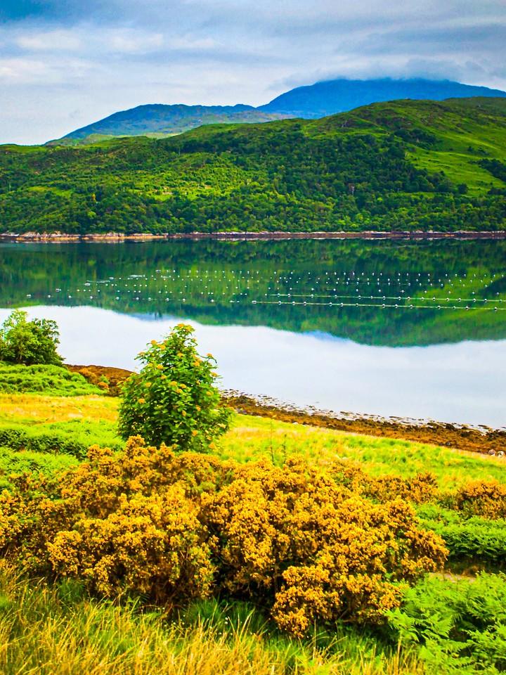 苏格兰美景,瞬间定格_图1-31