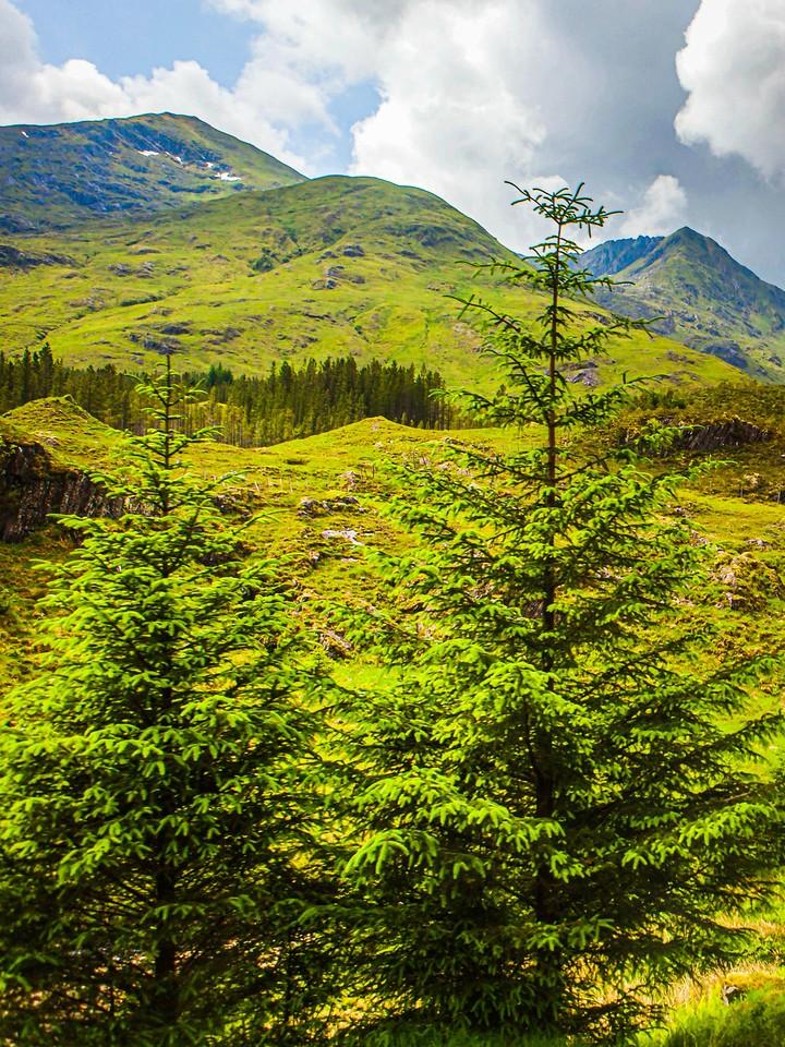 苏格兰美景,瞬间定格_图1-36