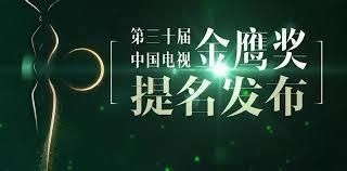 赵丽颖金鹰奖双提名,与孙俪陶虹角逐最佳女演员_图1-4