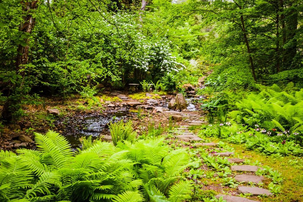 Chanticleer花园,刷新记忆_图1-21