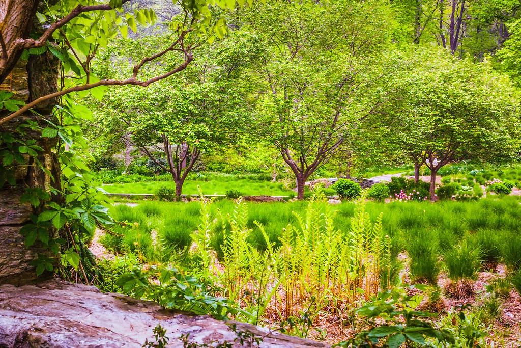 Chanticleer花园,刷新记忆_图1-23