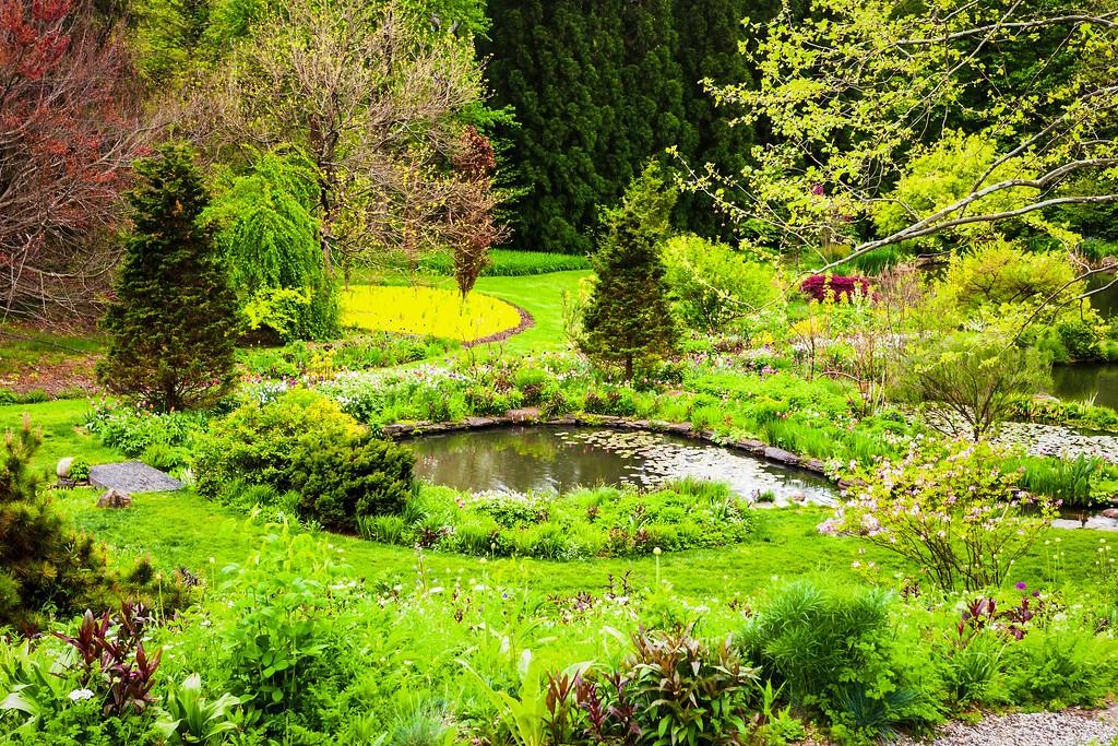 Chanticleer花园,刷新记忆_图1-22