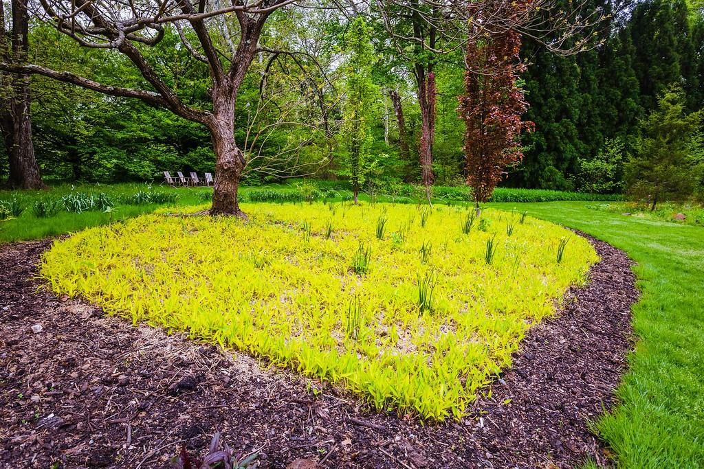Chanticleer花园,刷新记忆_图1-18
