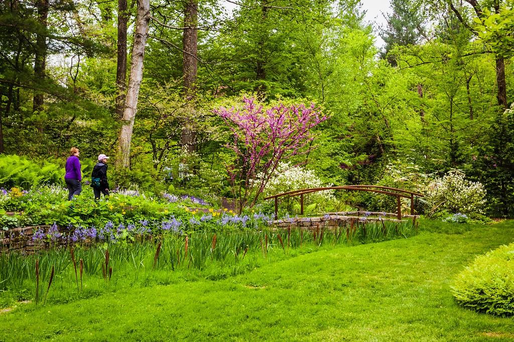 Chanticleer花园,刷新记忆_图1-19