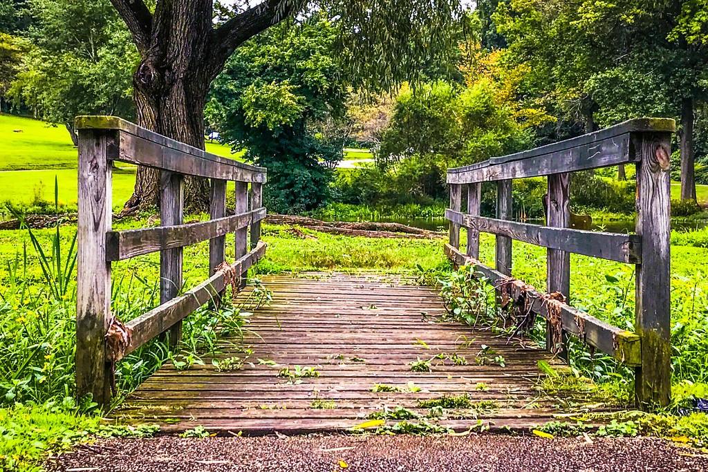 Chanticleer花园,刷新记忆_图1-12
