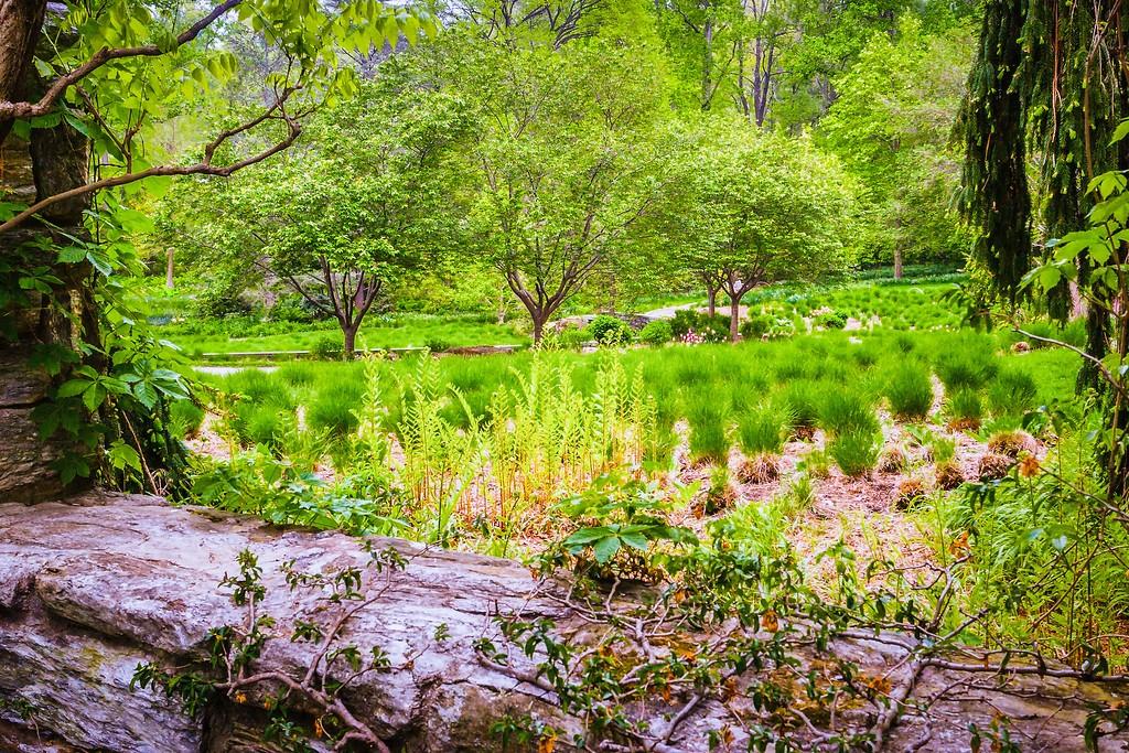 Chanticleer花园,刷新记忆_图1-17