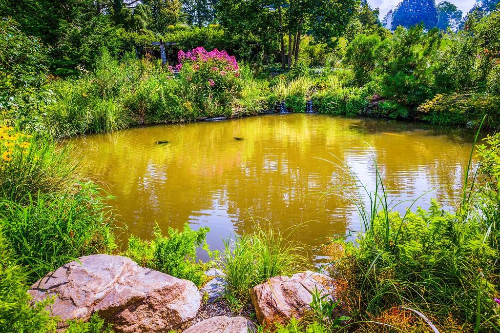 Chanticleer花园,刷新记忆_图1-15