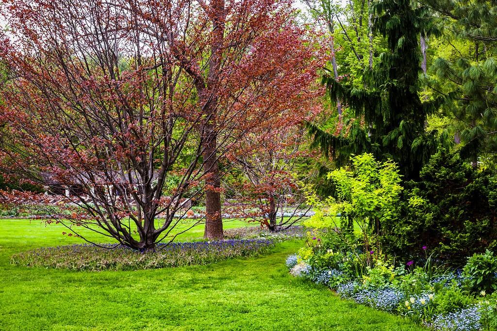 Chanticleer花园,刷新记忆_图1-6