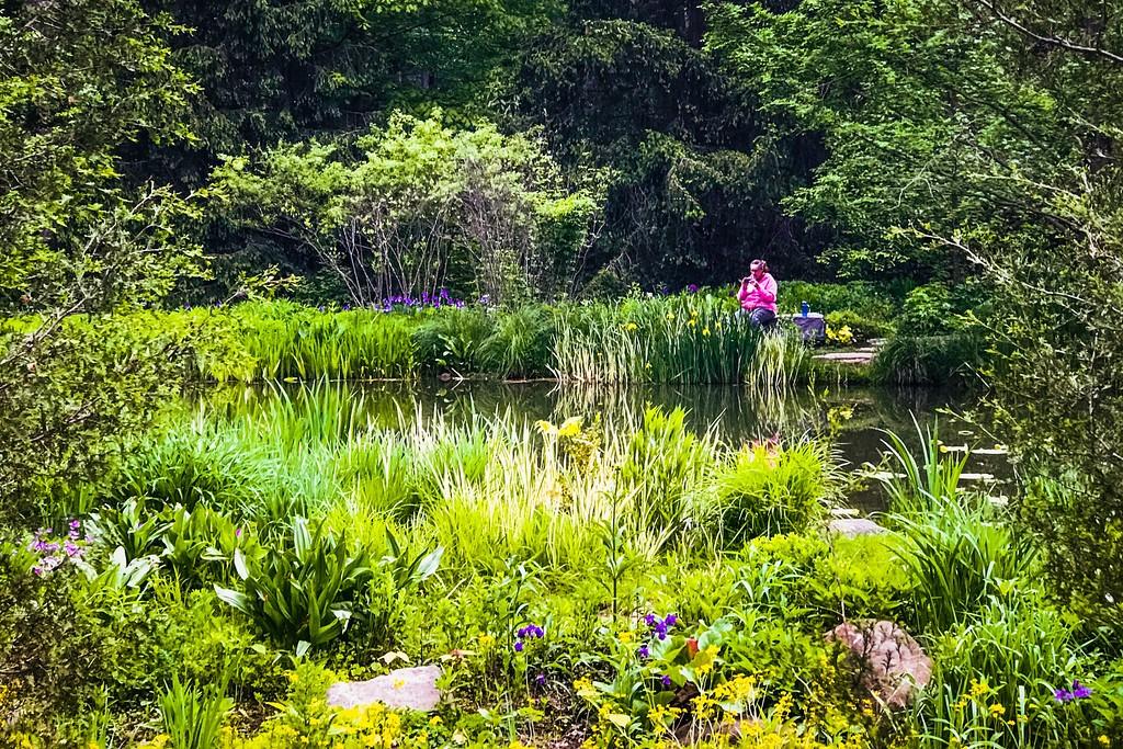 Chanticleer花园,刷新记忆_图1-7