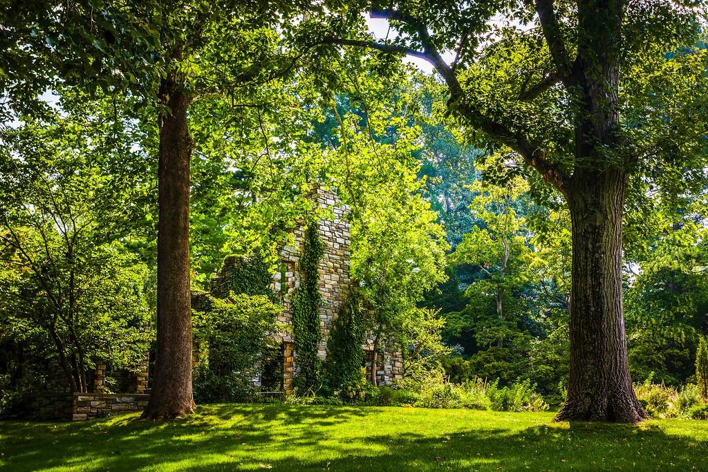 Chanticleer花园,刷新记忆_图1-11