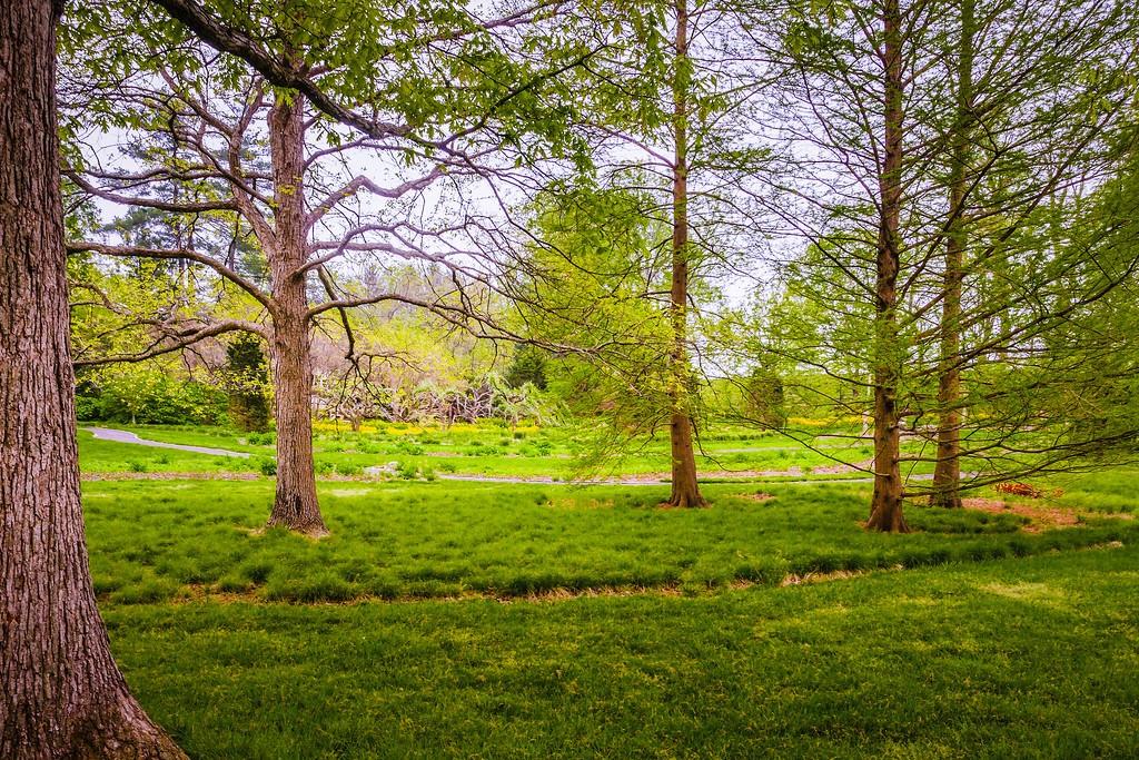 Chanticleer花园,刷新记忆_图1-9