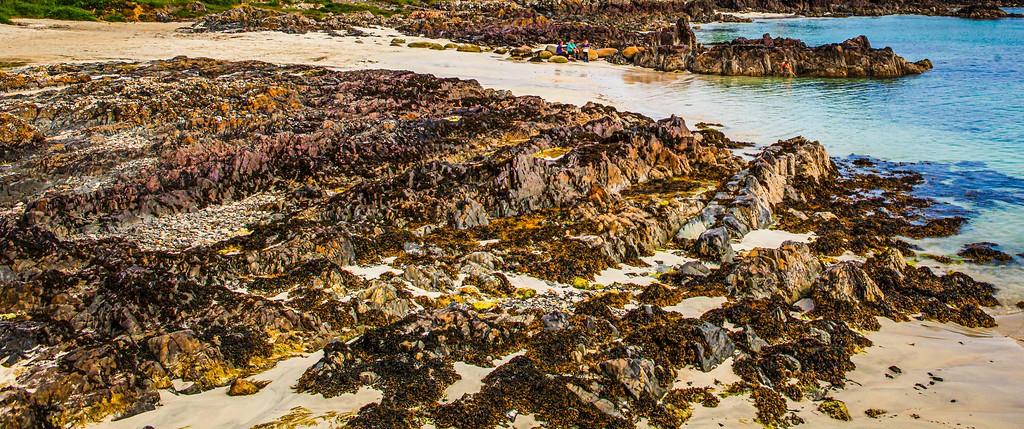 苏格兰美景,礁石海景_图1-19
