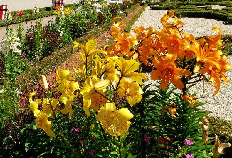 比亚韦斯托克的布兰尼基花园_图1-23