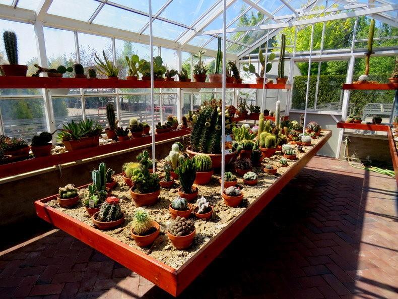 卡皮亚斯花园---2_图1-3