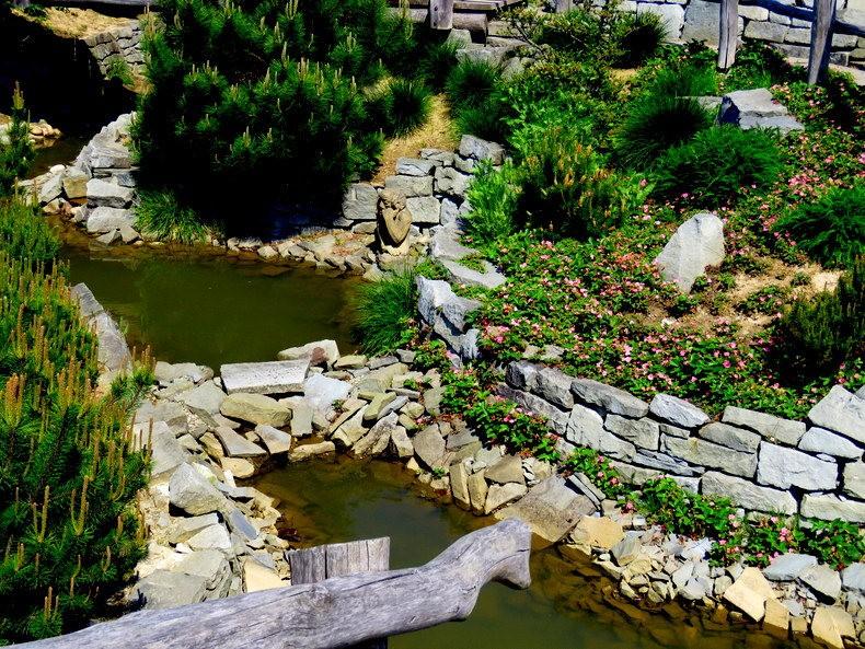 卡皮亚斯花园---2_图1-13