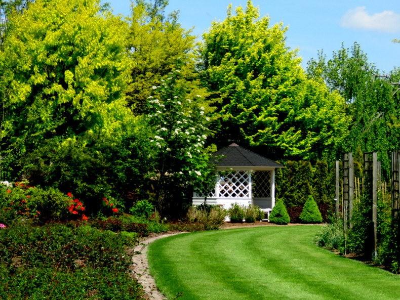 卡皮亚斯花园---2_图1-17