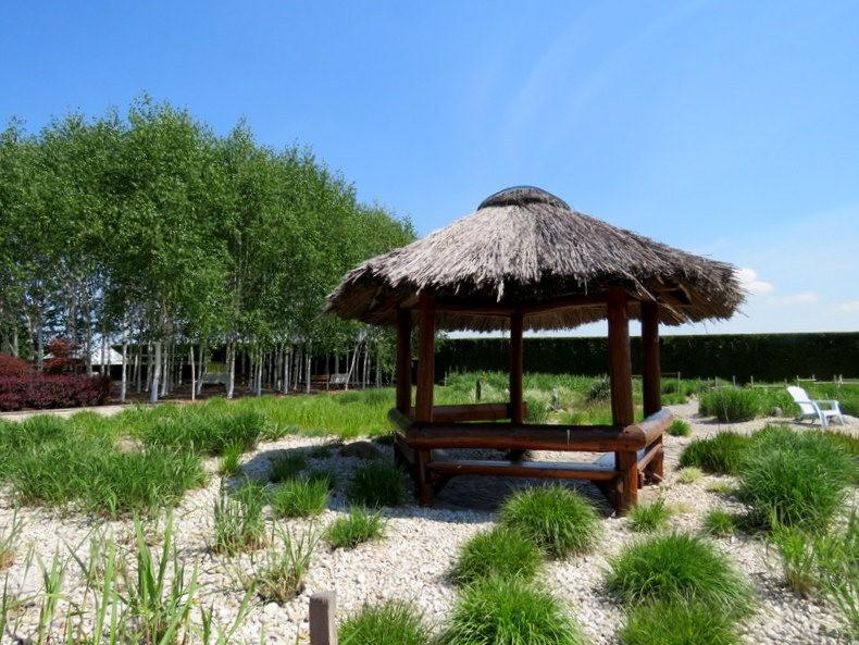 卡皮亚斯花园---2_图1-21