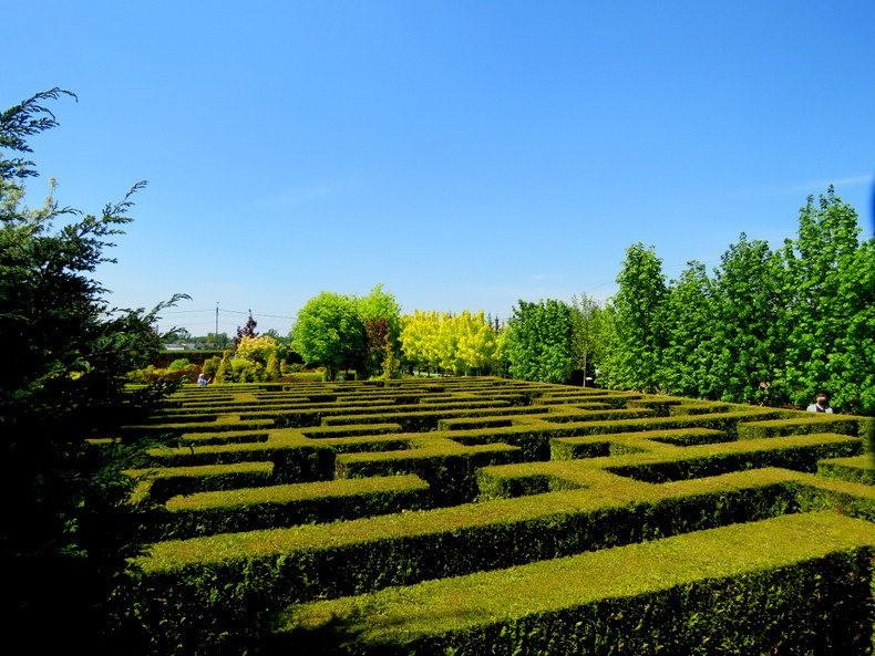 卡皮亚斯花园---2_图1-23