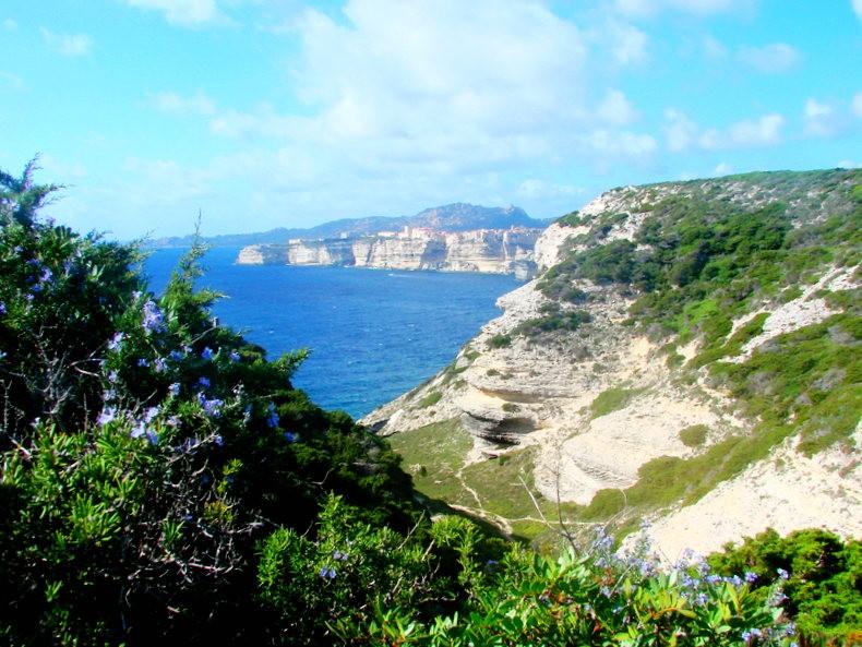 科西嘉岛游荡之-博尼法西奥_图1-29