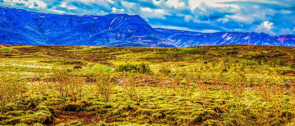 冰岛风采,彩色画布_图1-7