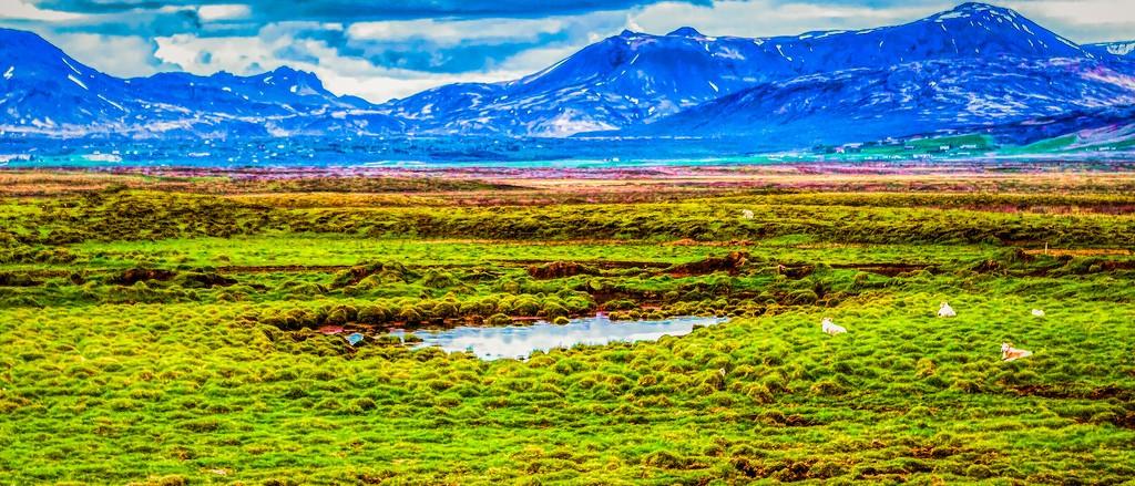 冰岛风采,彩色画布_图1-14