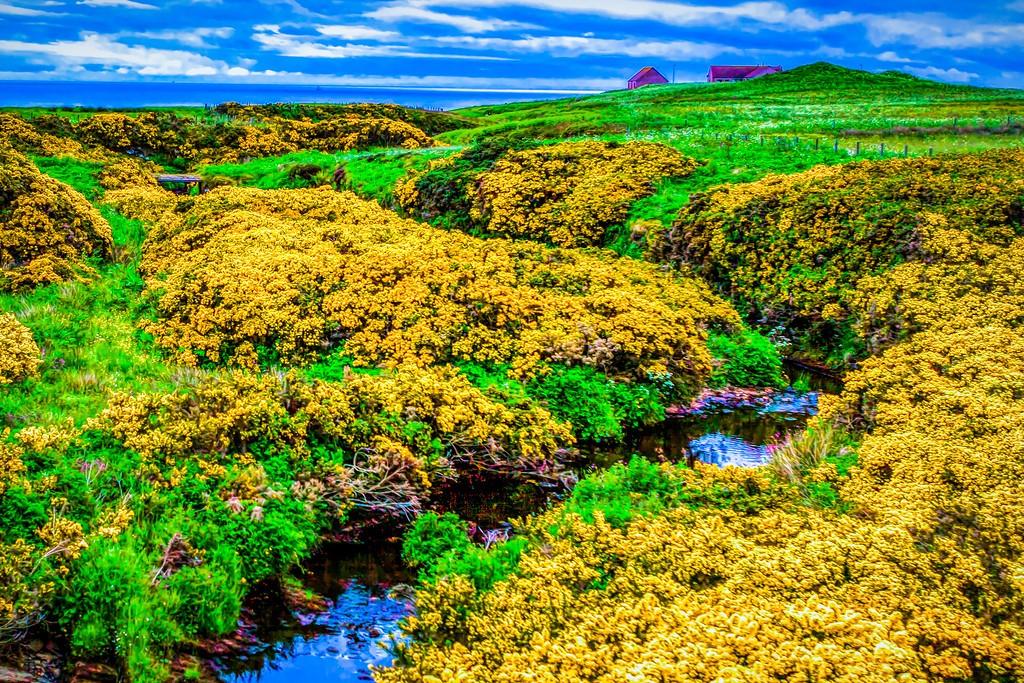 苏格兰美景,大地线条_图1-38
