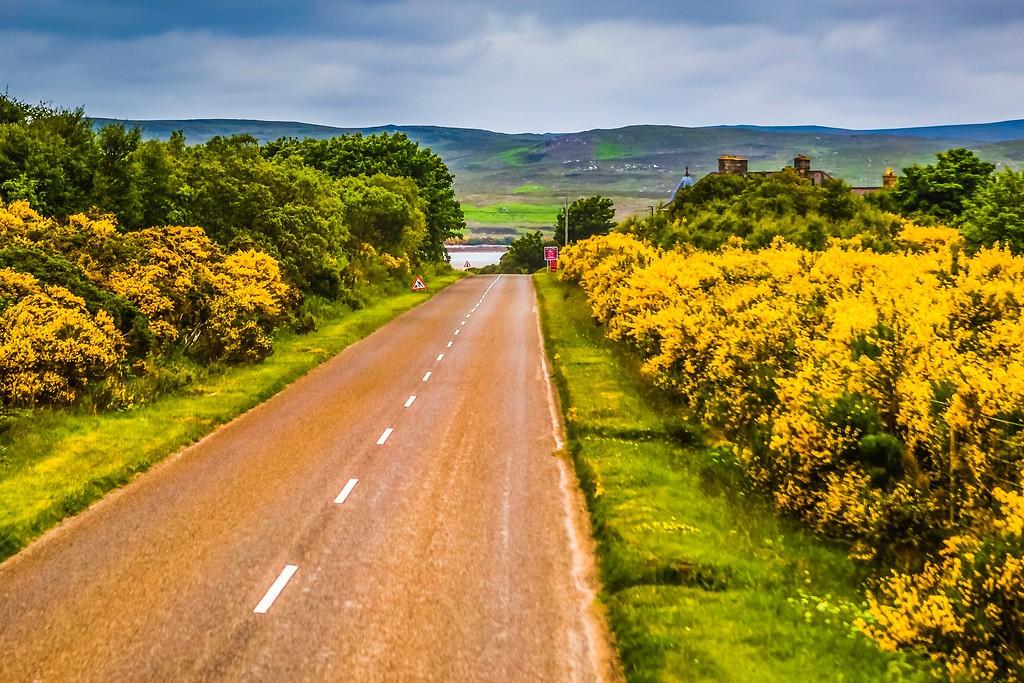 苏格兰美景,大地线条_图1-11