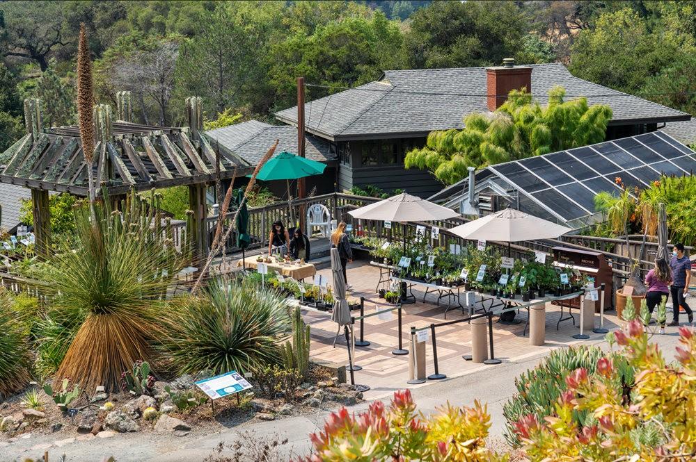 加州大学伯克利分校的植物园_图1-5